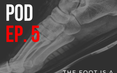 BF Podcast Ep. 5: The Foot is a Microcosm with G8 Performance CEO David Lee